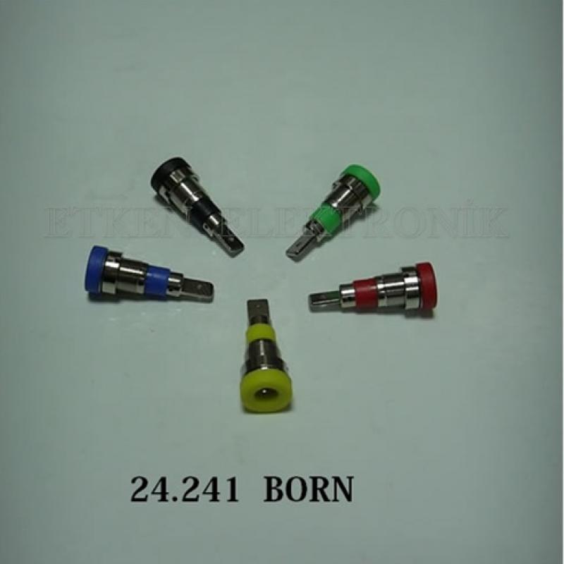 24.241 BORN
